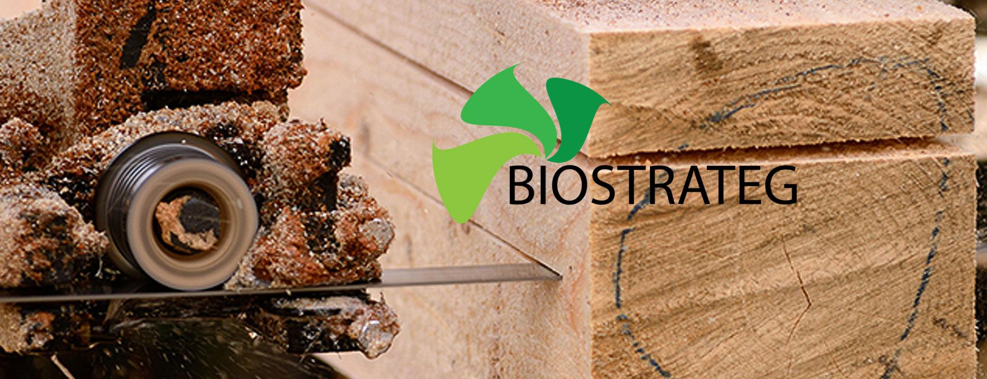 Biostrateg_slide